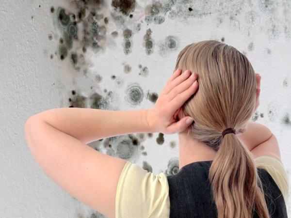 làm sạch tường nhà bị bẩn
