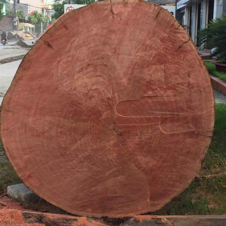 gỗ đinh hương là gì