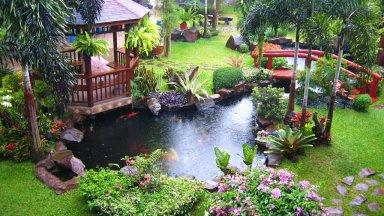 Thiết kế sân vườn phong cách Nhật Bản cho ngôi nhà